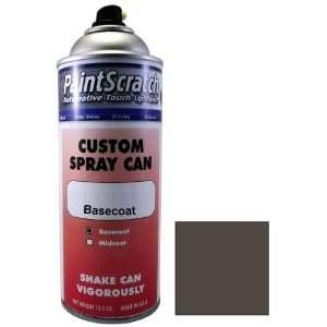 12.5 Oz. Spray Can of Platinum Matt (Wheel) Touch Up Paint