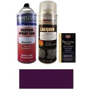 12.5 Oz. Medium Aubergine Metallic Spray Can Paint Kit for