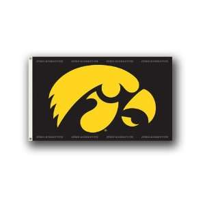 Collegiate Iowa Hawkeyes Logo Flag 3X5 Foot: Patio, Lawn