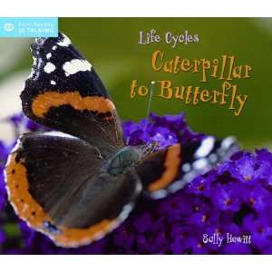 Life Cycles (Start Talking) (9781845383046): Sally Hewitt: Books