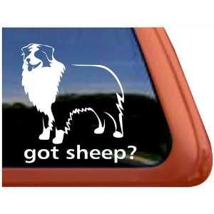 Got Sheep? Australian Shepherd Dog Vinyl Window Decal