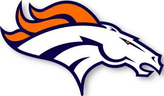 about our nfl team skins team denver broncos size approx 15 x 9 large