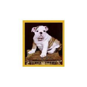 New Magnetic Bookmark Bulldog Puppy High Quality Modern