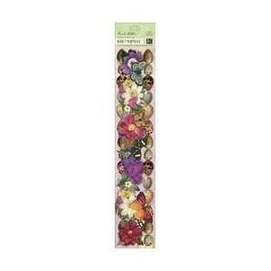 K & Company Flora & Fauna Adhesive Borders 12 ; 3 Items