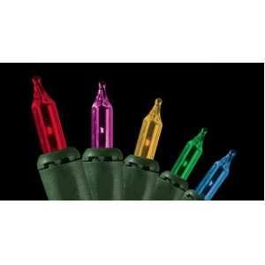 Set of 50 Multi Color Everglow Mini Christmas Lights
