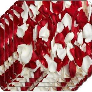 Rikki KnightTM Red and White Rose Petals   Square Beer