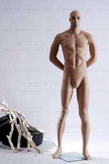 amt mannequins standing male mannequin model tim