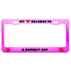Bombay Cat Pet Pink Metal License Plate Frame Tag Holder