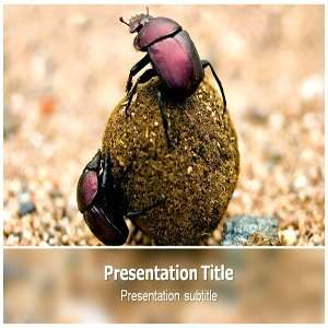 Powerpoint Templates   PPT Templates for Beatles   Beatles Powerpoint