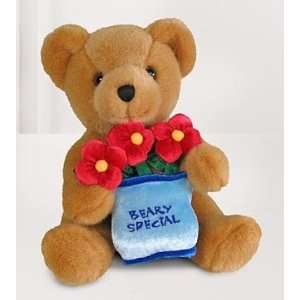 Very Special Message Bear By Build A Bear Workshop Toys & Games