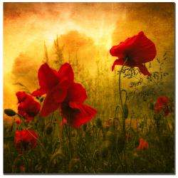 Philippe Sainte Laudy Red for Love Canvas Art