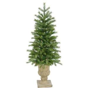 Pine Potted Christmas Tree   Clear Dura Lit Lights
