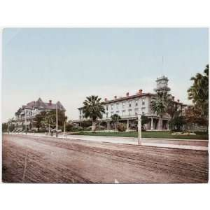 Reprint Arlington Hotel, Santa Barbara. 1901 1901 Home