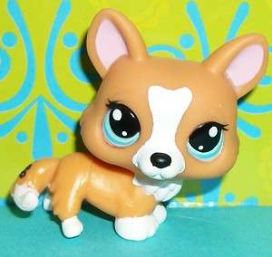 Littlest Pet Shop~#1360 CARAMEL WELSH CORGI FOX PUPPY DOG Green Eyes