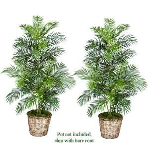 TWO 5 Artificial Areca Palm Trees, with No Pot,: Home