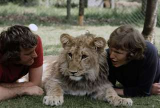 A Lion Called Christian: The True Story of the Remarkable Bond