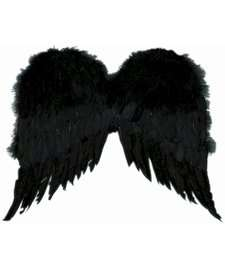 Black Feather Angel Wings