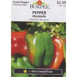 Burpee Sweet Maxibelle Pepper   30 Seeds Patio, Lawn & Garden